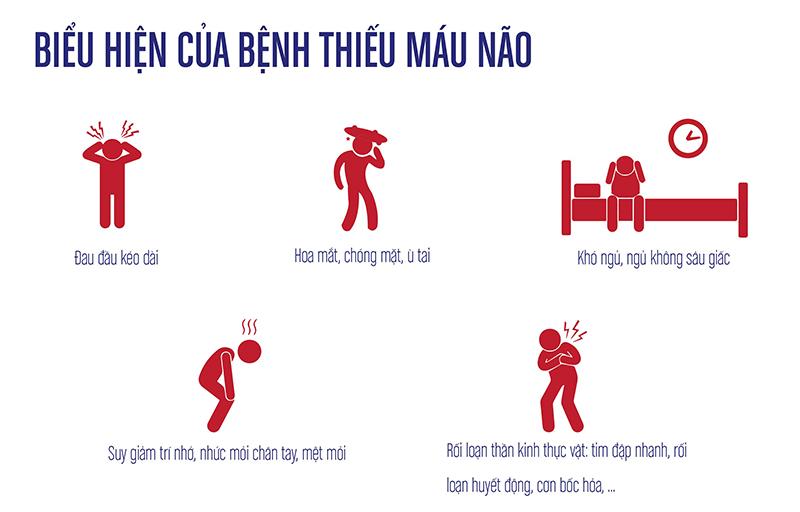 Thuoc-dieu-tri-benh-thieu-nang-tuan-hoan-nao-bang-dong-y-2