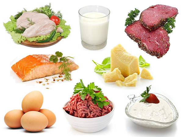 Bị suy nhược cơ thể nên ăn thực phẩm giàu protein