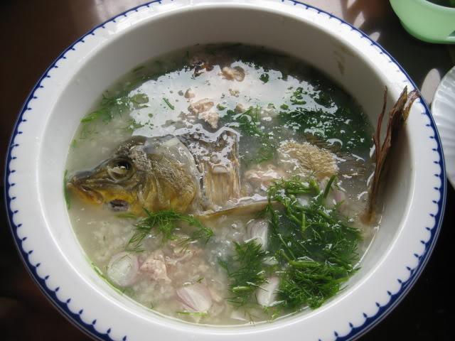 Món cháo cá diếc chữa huyết áp thấp