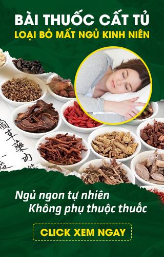 Bài thuốc điều trị mất ngủ